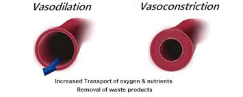 mouth-breathing-vasoconstriction